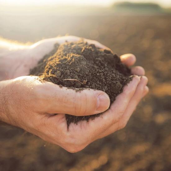 Χημική Ανάλυση Χώματος